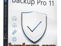 Ashampoo Backup Pro 11.07 Full + Crack