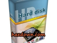 Hard Disk Sentinel Pro 5.20.3 Build 9372 Beta Full + Activator
