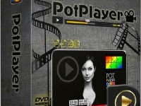 Daum PotPlayer 1.7.12505 Full Version