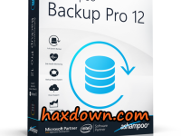 Ashampoo Backup Pro 12.03 Full + Keygen
