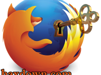 Firefox Password Viewer 6.5 Full + Crack