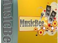MusicBee 3.0.5994 Full + Crack