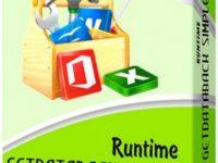 Runtime GetDataBack Simple 5.50 Full + Crack