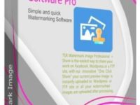 TSR Watermark Image Software Pro 3.6.1.1 Full + Serial Key