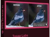 Topaz JPEG to RAW AI 2.2.0 Full + Serial Key