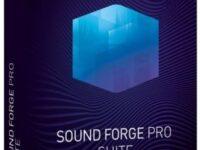 MAGIX Sound Forge Pro Suite 14.0 Build 130 Full + Patch
