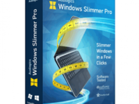 Auslogics Windows Slimmer Professional 3.0.0.1 Full Crack